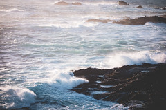 Point-Lobos-14 (hotcommodity) Tags: ocean california sunset wild beach nature water monterey waves highway1 pacificocean westcoast seamist beautifulearth turquoisewater bigsurhighway pointlobosstatenaturalreserve