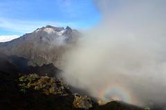 "The ""saint"" in the Rwenzori range! (supersky77) Tags: africa cloud broken fog alone nuvola halo uganda nebbia aura spectre rwenzori brokenspectre rwenzorinationalpark spettrodibroken mountspeke"