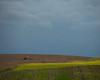 l_3U4A8643_MartenSvensson (Bad-Duck) Tags: traktor höst landskap moln människa fält årstid ringvält