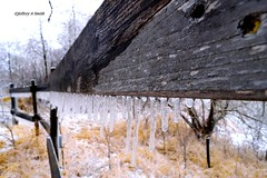 DSC_1037_123 (Jeffery A. Smith) Tags: ice fence nikon icestorm northdakota icicle freezingrain fenceline woodfence bottineau woodpost d3300