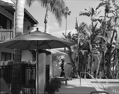 Santa Barbara (westkauai) Tags: california bw santabarbara pentax takumar trix pentax6x7 75mmlens