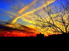 New York Sunset (dimaruss34) Tags: sunset newyork brooklyn spring image dmitriyfomenko