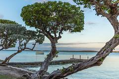 Waiting (Bob Kirschke) Tags: sailboat bay bahamas harborisland harborview