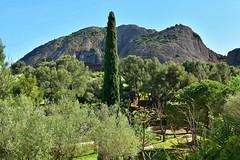 La Ciotat : Parc du Mugel (Pantchoa) Tags: france nature pins ctedazur arbres provence paysage extrieur parc rocher oliviers laciotat cyprs mugel d7100 24mmf18g