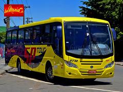 SP Tour 2732 - Mascarello Roma 330 - Volksbus 17.230 EOD (busManaCo) Tags: blue red black roma bus green yellow grey tour 330 sp eod nibus mascarello busmanaco 17230 nikond3100
