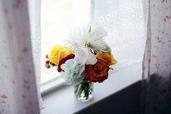 (Mary Jo.) Tags: flowers love window memorial christ curtain jesus softlight mmj
