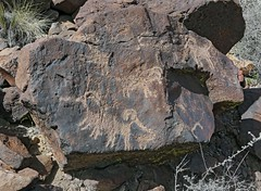 Petroglyphs / Blackrock Well Site (Ron Wolf) Tags: california archaeology nationalpark nativeamerican salinevalley petroglyph anthropology shoshone rockart zoomorph bighornsheep deathvalleynationalpark piute numic