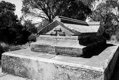 John Beamont Esq (Kent Holloway) Tags: au australia tasmania leicam6 fujiacros100 miena summicron35mm