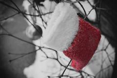 Lonely Christmas stocking (kevin.bates4@yahoo.ca) Tags: christmas decorations gimp desaturation stocking selective