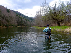 P1010481-2.jpg (Upstate Dave) Tags: activity catskills delawareriver eastbranchdelawareriver fishing flyfishing newyorkstate davewilliams people 2014
