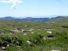 Tundra (Patricia Henschen) Tags: mtevans mtevansscenicbyway