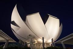 Lotus (ah.b|ack) Tags: singapore cityscape sony tokina f16 rmc f35 marinabay 17mm a7ii artsciencemuseum a7mk2