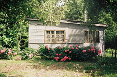 Summer House (Joe Pepper) Tags: travel flowers summer film nature analog 35mm canon countryside fuji explore summerhouse vilnius peonies canonftb