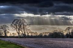 Storm (Arthur Brown PHOTOGRAPHY) Tags: leicestershire rutland rutlandwater canon85mmf18 canon70d