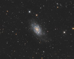 NGC 2403 (John.R.Taylor (www.cloudedout.squarespace.com)) Tags: