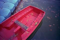 Fall on the lake (ale2000) Tags: blue autumn red lake fall film water leaves analog boat lomo lca lomography barca kodak deadleaves 400 analogue autunno portra barchetta laghetto smallboat autunnale fogliemorte nemalogue