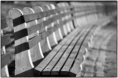 C83_4681 (Walker Evans is my Hero) Tags: nyc ny newyork bench nikon centralpark voigtlander apo 180mm d810