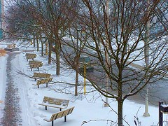 Vacancies (Haytham M.) Tags: winter white snow ontario canada tree bench branch outdoor serene february