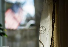 'merica (pixSullivan) Tags: window america mainstreet view depthoffield windowlight
