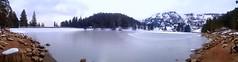 Le lac des truites à Soultzeren (mamietherese1) Tags: coth earthmarvels50earthfaves phvalue fleursetpaysages