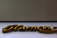 Blumen (Chalibah.Canon) Tags: city flowers flower writing germany logo deutschland frankfurt text blumen stadt font letter lettering blume schrift schriftzug buchstabe fressgass