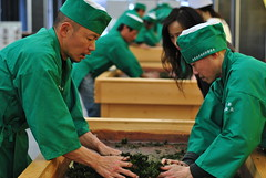 Handrolling process, contest in Uji (Obubu Tea) Tags: greentea kansai uji sencha japanesetea handrolling wazuka handprocess teaprocessing obubutea