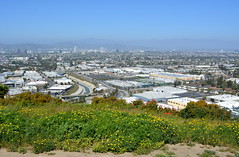 L.A. (dave87912) Tags: california city flowers sky mountains gabriel rain fog river la smog losangeles spring haze san industrial cityscape cement hills overlook baldwin culver