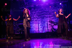 JESS GLYNNE - Fabrique, Milano 21 March 2016  RODOLFO SASSANO 2016 65 (Rodolfo Sassano) Tags: show house concert live milano pop soul singer rb songwriter fabrique dancepop englishmusician vivoconcerti jessglynne jessicahannahglynne