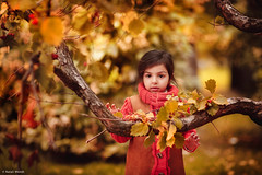 Child (Natali Wendt) Tags: autumn girl kid child