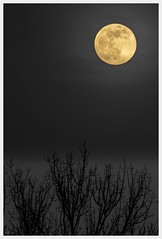 the mysteries of distance (i.v.a.n.k.a) Tags: light moon mystery nightsky metaphorical sonyalpha ivanahesova ivanadorn