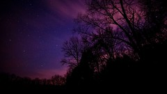 purps. (Ryan Hallock) Tags: longexposure trees sky beautiful night clouds stars outside outdoors buffalo pretty wny astrometrydotnet:status=failed sonya714mmf28 astrometrydotnet:id=nova1488083