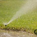 Sprinkler Stop-Action