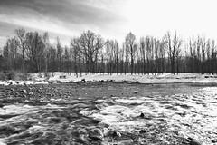 Las presillas (salvador de santiago) Tags: blanco rio river agua arboles y nieve negro hielo efs1585mm