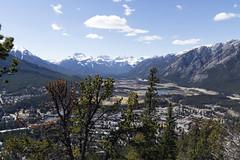 Banff, Tunnel Mountain Hike, April 9 2016 (50)_e_apr_11_16 (Velates) Tags: canada mountains alberta rockymountains banffnationalpark