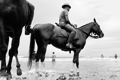 @ Marina Beach, Chennai, 2014 (bmahesh) Tags: life street people horse india marinabeach chennai tamilnadu wwwmaheshbcom