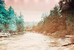 Tangerine Springs (thomas_anthony__) Tags: road travel blue trees winter light orange lake snow color tree film water pine analog forest 35mm canon vintage river lomo lomography stream path turquoise vibrant grain dream surreal roadtrip lightleak lightleaks pines memory gradient dreamy paths a1 analogue leak canona1 daydream sapphire daydreams deepcreeklake offcolor lightleaked dreamforest lomochrome lomochrometurquoise