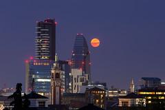 Luna sorgente sulle Torre Solaria e Torre Diamante (Obliot) Tags: sunset moon skyline night italia skyscrapers milano it fullmoon lombardia diamante 2016 portanuova solaria milanopanoramica obliot