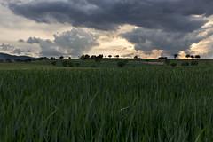 Sul far della sera.... (Ale*66*) Tags: sunset italy clouds landscape tramonto nuvole horizon umbria orizzonte