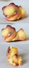 Aileen doll mini dragon (customlovers) Tags: yellow doll dragon shy aileen limited accessory