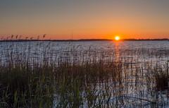Lac de Lacanau (daniel_58) Tags: lake reflection nature sunrise landscape lac olympus reflet hdr omd em10