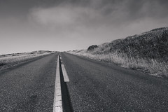 Road at Point Reyes (Biddle Photo) Tags: light portrait blackandwhite bw white black nature lines contrast digital canon blackwhite 24105mmf4l shadows gloomy purple sharp portraiture shadowplay highlight tone 24105mm 24105mml canon6d vsco vscofilm