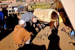 DSCF4455.jpg (ptpintoa@gmail.com) Tags: morroco marrakech marruecos marrocos