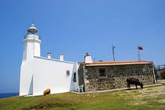 nceburun Deniz Feneri (Efkan Sinan) Tags: lighthouse trkiye turquie trkei tr turchia sinop denizfeneri batkaradeniz inceburun trkiyeninkuzeyucu