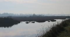 IMG_0009x (gzammarchi) Tags: lago barca italia haiku natura poesia paesaggio canale ravenna monocrome scuro piallassa portocorsini piallassabaiona