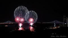 View from Coit Tower - Bay Lights Re-Lighting and Super Bowl City Fireworks Show - 013016 - 02 (Stan-the-Rocker) Tags: sanfrancisco sony coittower northbeach embarcadero ferrybuilding telegraphhill nex sanfranciscooaklandbaybridge sfobb sb50 baylights sel1855 stantherocker