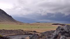 Teaser Flickr 1 (nassimjaouen) Tags: travel sky mountain film nature field clouds landscape island iceland timelapse video nikon sheep 169 islande d90 nikond90 nfurholt bjlfell instagram hyperlapse instagramers