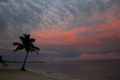 ltima puesta de sol ({boule de neige}) Tags: pink sunset sea sky color beach colors clouds mexico sand yucatan tulum messico