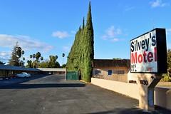Silvey's Motel (rickele) Tags: volvo italiancypress westsacramento pv544 livedin monthlyrates westcapitolave notell weeklyrates westsac roadsidemotel oldus40 usroute40 oldus99 silveysmotel usroute99w
