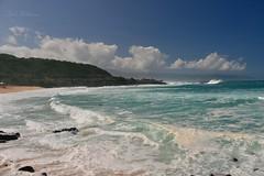Waimea Bay (Pink Hibiscus) Tags: hawaii nikon surf oahu northshore fx waimeabay allrightsreserved d800 copyrighted 2016 pinkhibiscus waimeabaythedayaftertheeddie