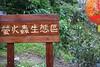 HUI_0039 (WishHui) Tags: 台灣 平溪 天燈 2016 平溪天燈 平溪天燈節 新北市